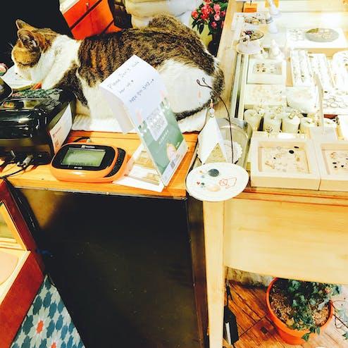 ウンナム三清洞店