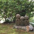 ✔️鎌倉📍長谷寺  時間が足りなくてもっとじっくり全部見たいから絶対リベンジ💪