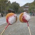✔️鎌倉📍髙徳院  大仏様を見る前につられて食べちゃったいちご飴!美味しかった〜🤤💗