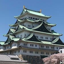 桜満開の名古屋城 さくら日和🌸