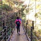 #みやま橋 #高尾山 2016年11月  橋大好きなので往路は #四号路 を選択😆💕  私と友達のマウンテンパーカー派手色だから すごく目立ってたかもしれない...笑