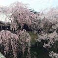 日本100名城 27番 上田城