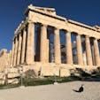 ネコとパルテノン神殿
