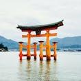 日本三景、宮島へ。 構図の勉強して行けばよかった… 厳島神社以外にも、大聖院や千畳閣など、見所満載でした。