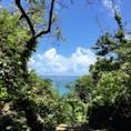 夏に行った沖縄😊 斎場御嶽は大好きな場所です。 特にこの景色。 礼拝所から見ることが出来る久高島。 パワーが貰え、気持ちも暖かくなりそして、何と言っても空気が張り詰めています。  何度でも訪れたい場所です。