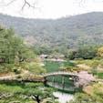 栗林公園🌸🍡 公園内はとても広く、 桜も咲いていて綺麗でした。 途中で団子も売っているので、 景色を見ながら団子を食べれて 幸せでした✨ 口元拭くのにウェットティッシュは 必需品です🤭  #香川 #散歩 #景色 #小旅行 #ドライブ