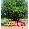 チェジュ島 エコランドにある、カラフルな椅子