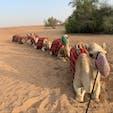 ドバイの砂漠にて