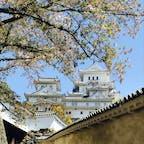 ちょっと前に、姫路城、勧められて行ってきました。 葉桜とのコントラストが素晴らしかった✨