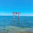 📍白鬚神社【滋賀県】     湖に浮かぶ鳥居
