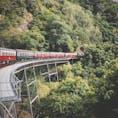 キュランダ観光鉄道🚃 #世界の車窓から