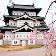 弘前城といえばやはり桜ですね。
