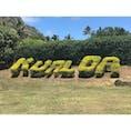 #Hawaii #ハワイ #Kualoaranch #クアロアランチ