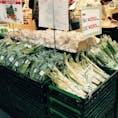 道の駅米沢では、新鮮な野菜や完熟フルーツが並んでいます。春は山菜もたくさん。有名なウコギの新芽もありました!