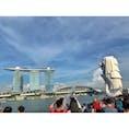 📍シンガポール マーライオン🦁  #シンガポール #マーライオン #Singapore