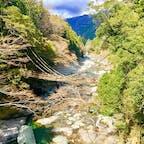 徳島県の祖谷のかずら橋。 遠くから見ると絶景。 実際歩くと結構怖い🚶♂️