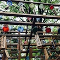 川越氷川神社へ たくさんの風鈴🎐でした。 #川越氷川神社