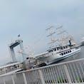 遊覧船オーシャンプリンス/神戸
