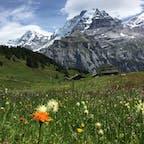 スイス ベルナーオーバーランド