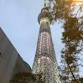 東京スカイツリー🗼 初ライトアップしたのを間近で見ました😊 もう少し暗くなれば、もっと夜景がきれいだと思います。 #東京スカイツリー #ライトアップ