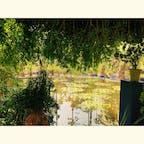 マラケシュ、マジョレル庭園