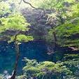 肉眼では、写真だと伝えきれないくらいの 透明度と青い池だった #青森県 #十二湖