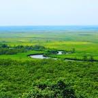 釧路湿原に行きました! 夏だったので超暑かったです!人はほとんどいませんでした!!
