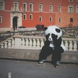 ワルシャワ旧市街で見かけたパンダ。