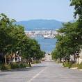 坂の街、函館に行きました。 海鮮も美味しくて街も綺麗で人も少なくて良い街です!