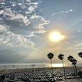 サンタモニカの桟橋から。 パームツリーと大きな夕日🌅