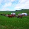 遊牧民の生活