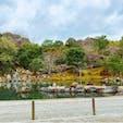 #天龍寺 #嵐山 #京都 2018年3月  庭園は日本文化の中でもすごく大好きかもしれない😌