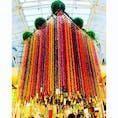 小学生が作った折鶴で出来てる七夕飾りは迫力満点!一つ一つが手作りで異なる吹き流しが連なる仙台の七夕まつり。 #仙台 #七夕まつり #吹き流し