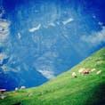 スイス・グリンデルワルド 幼い頃から、ずっと憧れていた景色。 すごいね。夢って、叶うんだよ🌟