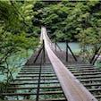 #夢の吊り橋 #静岡 2018年6月  実物はバスロマン色だった😆😆 笑