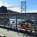 #しまなみ海道 #サイクリストの聖地 #広島 #尾道 と #愛媛 #今治 の往復 #自転車 #roadbike