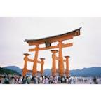#宮島 #厳島神社 #広島 #3月 #観光スポット #写ルンです  現在は工事中で、鉄格子張り巡らされてます。。笑