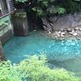 神奈川の秘境。気軽な気持ちで行ったらわりと遠かった、たくさん歩いたけど行く価値あり。  #ユーシン渓谷 #一切加工なし