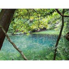 2019/08/19 庄内旅行 丸池様  地元の人(?)曰く、今日は若干濁り気味... でもちょっとの晴れ間の間に来てよかった! 空気が澄んだ感じで、いつまででも見ていられるような、不思議な気持ちになった。