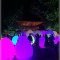 下鴨神社×チームラボ