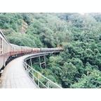 📍ケアンズ キュランダ 世界の車窓から で有名な列車。熱帯雨林の中を走っていく。とってもステキな時間やった。シンガポールからきた親日の家族にも出会えて色々話しながらたのしかったなあ。