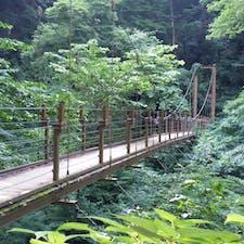 高尾山で見つけた橋。渡るよりこの辺の角度から見るのが私は好ましい。  #高尾山 #変化球ルートでの下山 #たぶん下山 #どのルートだかはもう定かでない