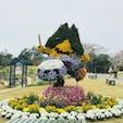 静岡 フラワーパーク