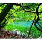 山形 丸池様