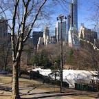 3月のセントラルパーク。