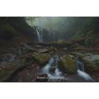 兵庫 猿壺の滝
