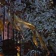 another Rockefeller Center pic ロックフェラーセンターのクリスマスイルミネーション