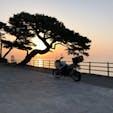 伊豆稲取の漁港の端っこにて。 早起きした人にしか見れない景色がありました。