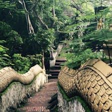 ラオス🇱🇦:ルアンパバーン。日本では狛犬が両側にいるのに、ラオスではどこでも龍が両側に🐉!お寺の中へ続く道も、ドラゴンボールのあの閻魔大王のところへ続く蛇の道みたいでした^ - ^