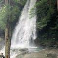 琵琶の滝  行った時の何日か前、四国に台風が来ちゃってて琵琶の滝の水量がやばかった  この水量普通じゃないらしい   #徳島 #祖谷 #大歩危 #琵琶の滝